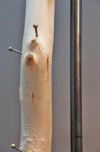 Baumgarderobe (7)