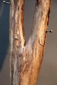 Baum garderobe (3)