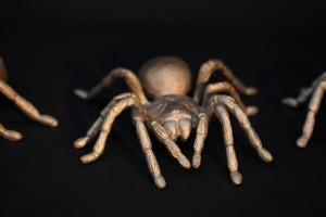 Bronze Spinne (1)