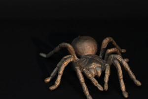 Bronze Spinne (2)