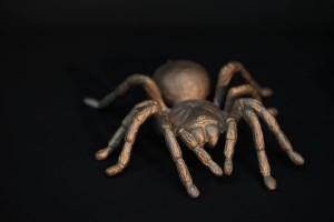 Bronze Spinne (3)