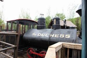 The duchess (14)