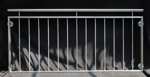französischer  Balkon (5)