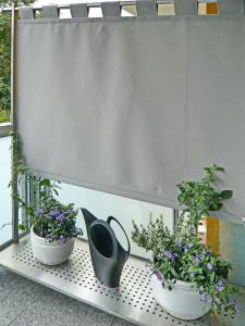 Windschutz Sichtschutz (1)