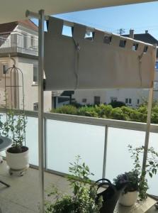Windschutz Sichtschutz (10)